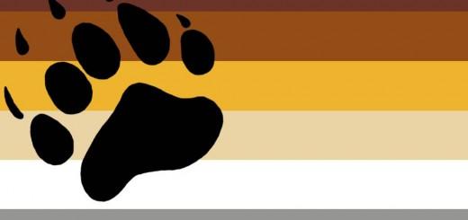 Bear-Pride-Flag