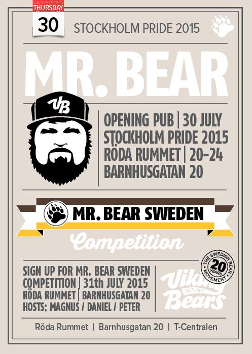 Viking Bears Mr Bear