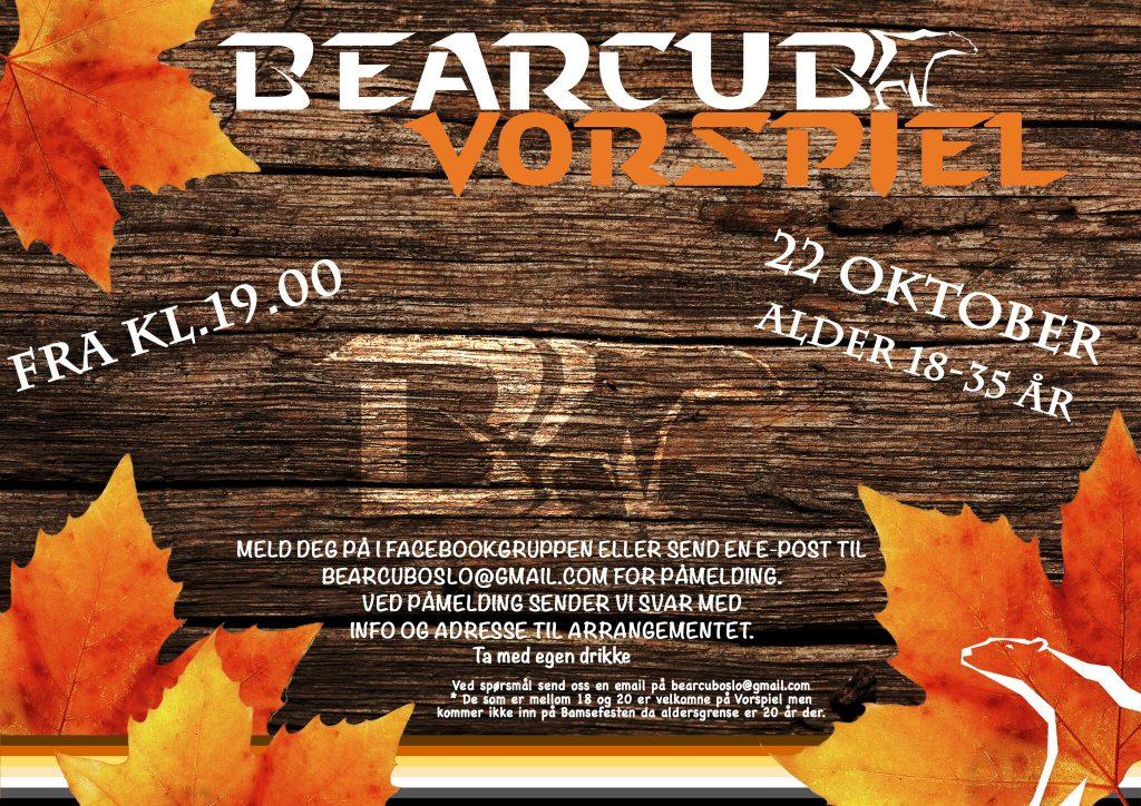 bearcub-2016-10-22