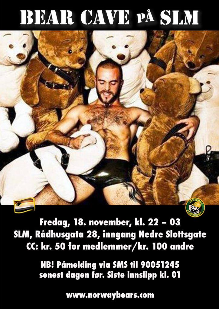 bearcave-nov2016-banner01-1448x2048